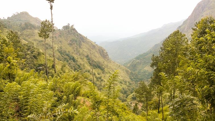 Things to do in Sri Lanka. The hills near Ella