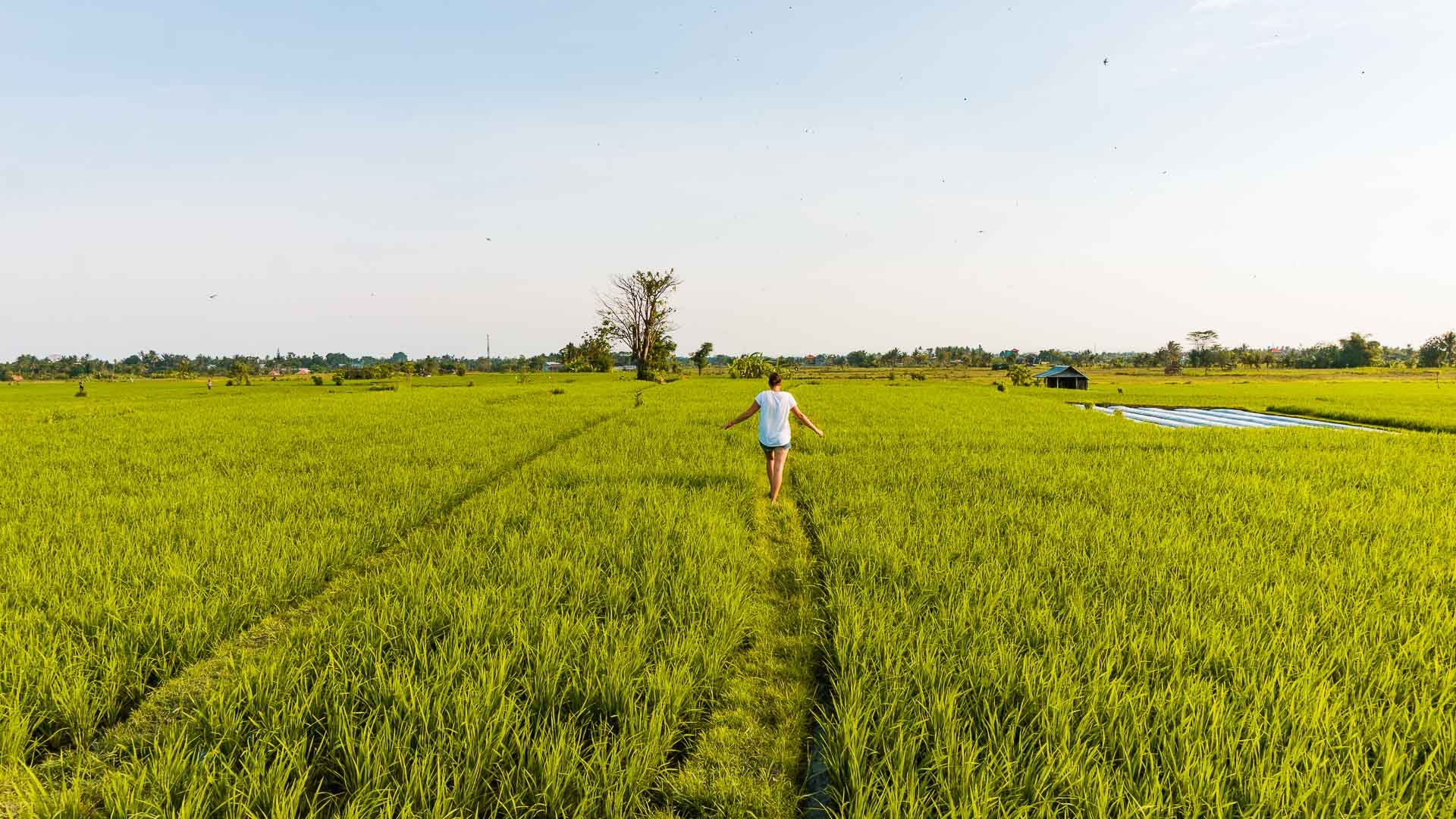 The best and most fun things to do in Ubud, Bali