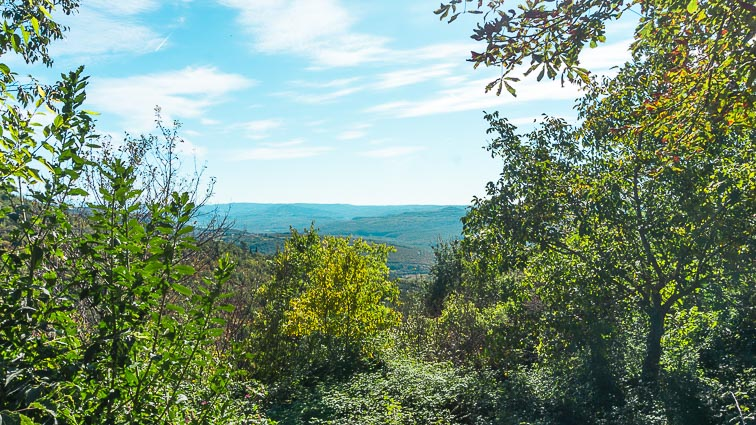 The hill country of Istria: croatia road trip