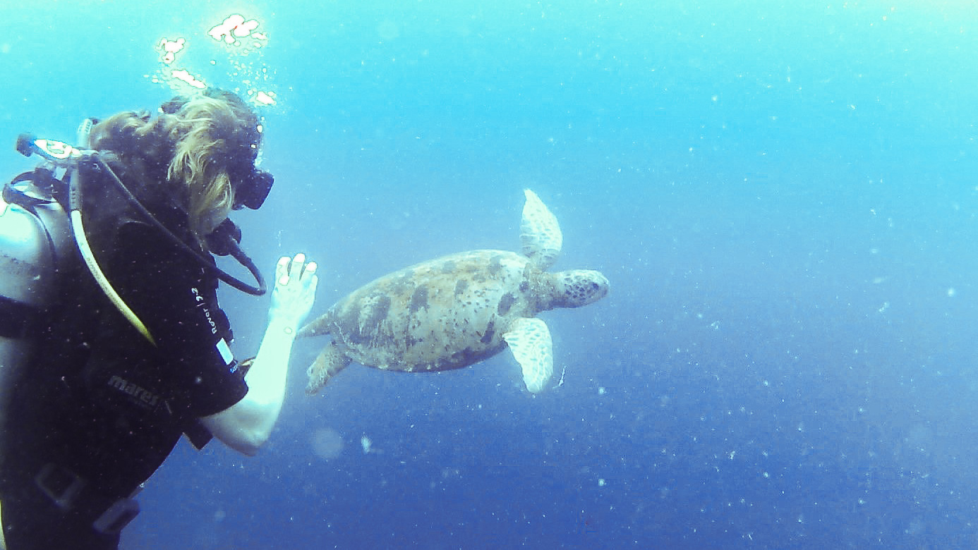 Suzan diving with a turtle. Diving in Sipadan