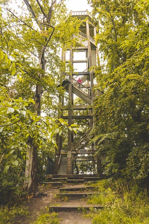 Belvedere Tower Oranjewoud, The Netherlands